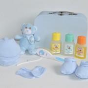 cesta recién nacido baby