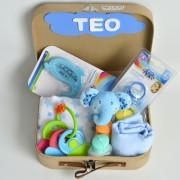cesta para el bebe