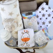 cestas y canastillas de bebe
