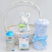 cesta recién nacido